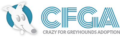 Crazy For Greyhounds Adoption